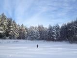 Meža dīķis ziemā