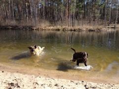 Džesika un peldēšanas sezonas atklāšana meža dīķī 1.maijā