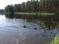 Venču ezers ar draugu Armani