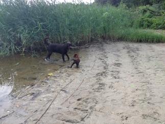 Mafins & Mango ezerā