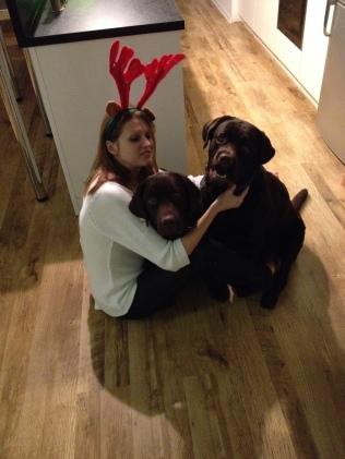 Reindeer and chocolates 25.12.2013