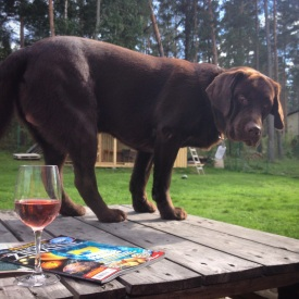 chocolate lab, wine, sun and reading