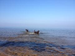 Lilaste Beach, Baltic Sea