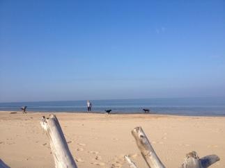 Lilaste Beach, Baltic Sea 04.10.2014